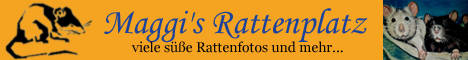 Rattenplatz